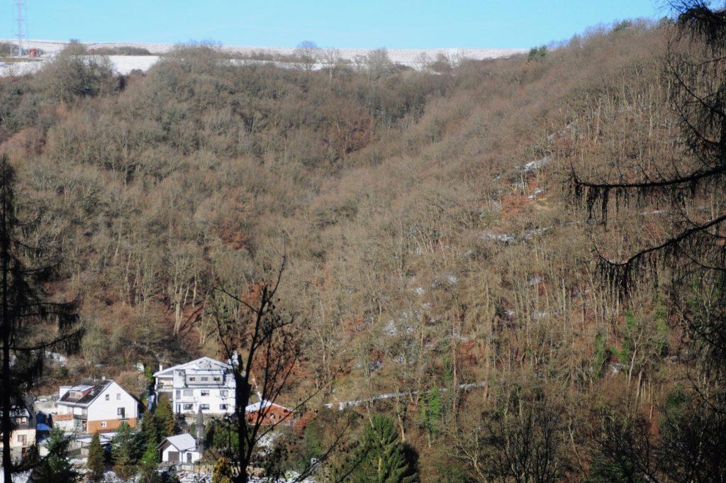 Der Reuschgraben am ostwärtigen Ortsrand von Laurenburg